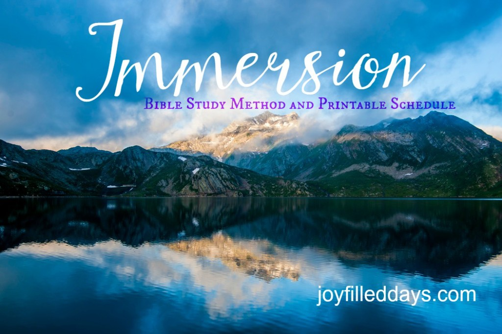 Immersion Bible Study
